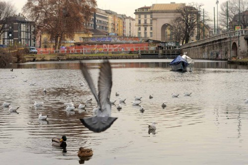 Milano, la Darsena, imminenti lavori di ristrutturazione