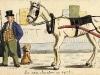 il-lavoro-dei-cavalli